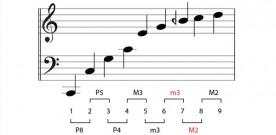 The Natural Harmonic Series