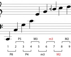 The Natural Harmonic Series