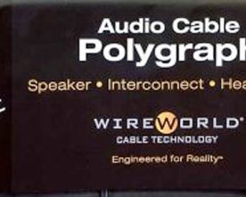 Wireworld Demo at Newport